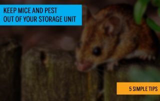 keeping your storage unit clean and organized