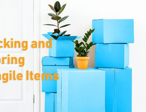 A Guide to Packing and Storing Your Fragile Items