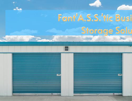 Fant(A.S.S.)tic Business Storage