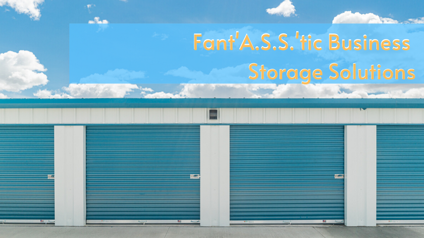 Fant'A.S.S.'tic Business Storage (2)