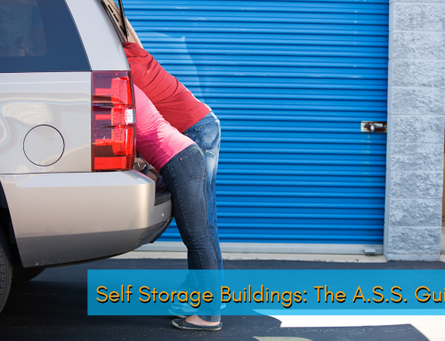 Self Storage Buildings: The A.S.S. Guide